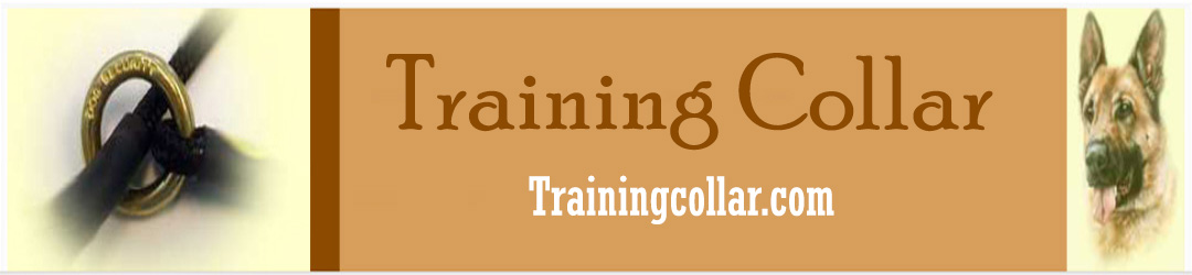 Trainingcollar